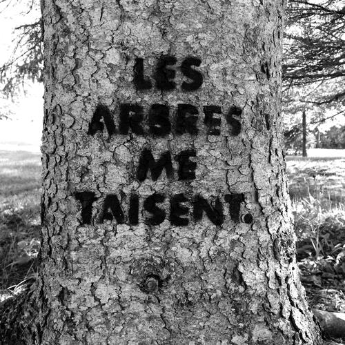 les-arbres-me-taisent